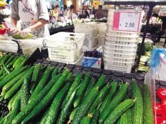 黄瓜顶花带刺与避孕药无关 植物生长剂对人无害