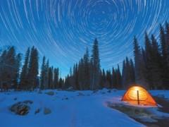 留住夜的黑 保护星星闪烁的家园